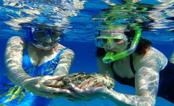 Snorkeling excursion to Mahmya Island