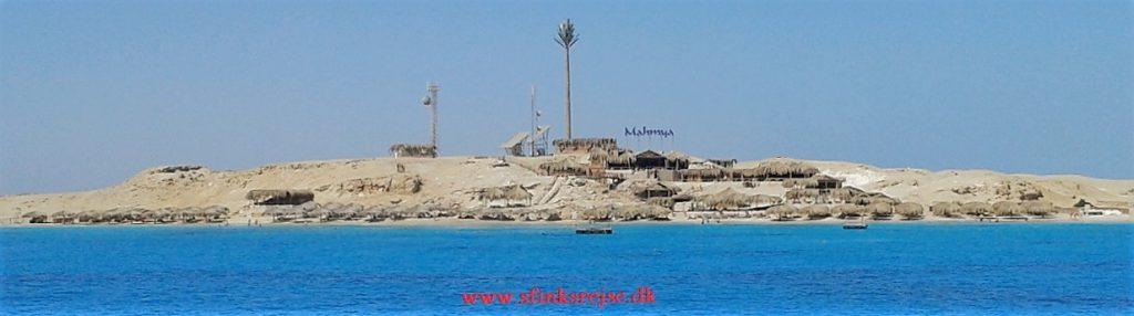 Snorkleudflugt til Mahmya
