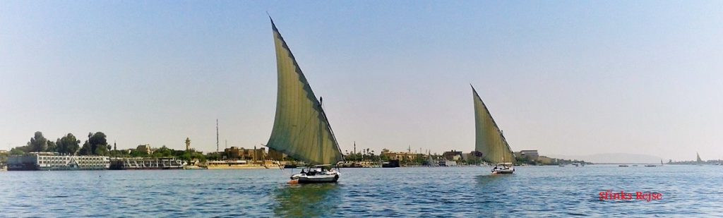 A VIP, One day trip to Luxor by bus