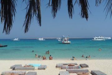 Snorkleudflugt til Mahmya-Øen