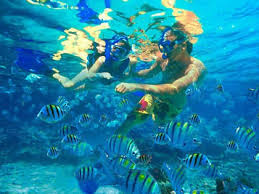 Snorkeling excursion to Utopia Island
