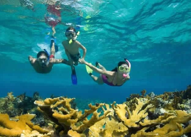 Snorkleudflugt til Ras Mohamed
