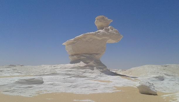 5 dages Ørken safari