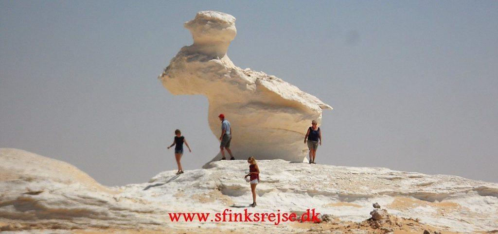 Den Hvide Ørken
