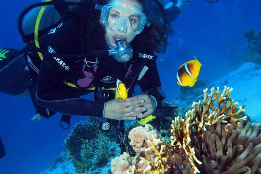 Hurghada Det Røde Hav Egypten