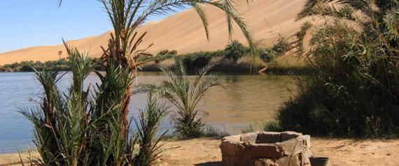 Bahariya oasen